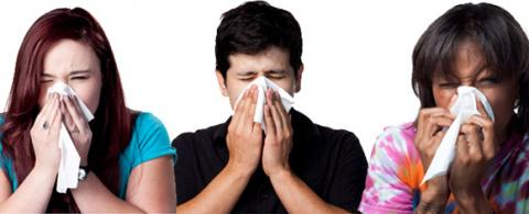Three people sneezing with tissues in hand