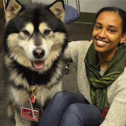 Hawkeye the wellness dog and student