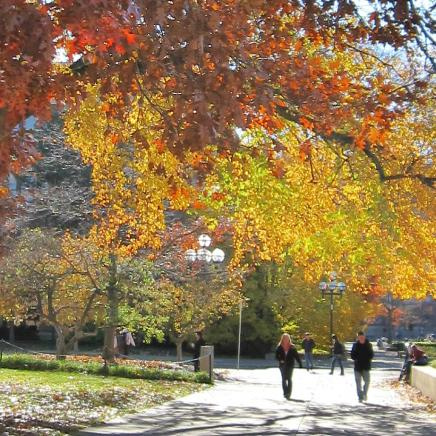Fall colors with students walking