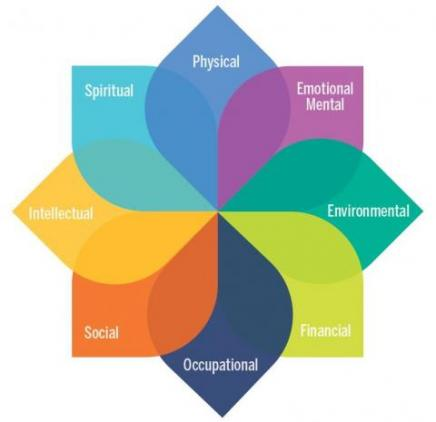 University of Michigan model of well-being